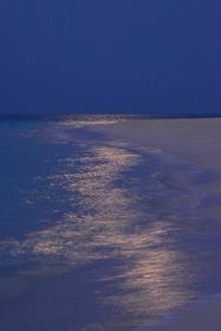 渚の月光の写真素材 [FYI04051485]