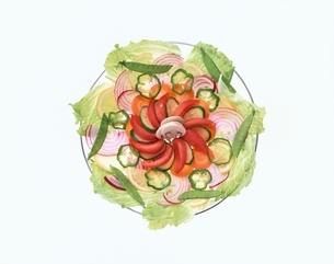 お皿の上の野菜の写真素材 [FYI04051721]