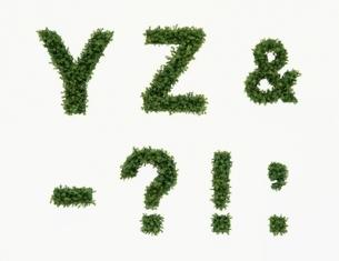 草で作られたアルファベットの文字と記号(Y~)の写真素材 [FYI04051723]