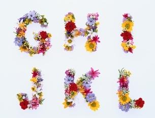 カラフルな花で作ったアルファベットの文字(G~L)の写真素材 [FYI04051734]