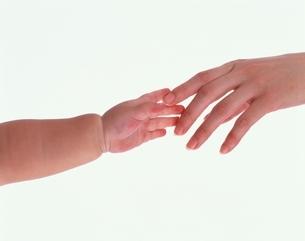 母の手と子供の手の写真素材 [FYI04051739]
