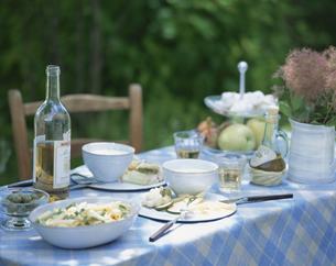 ガーデンランチ スープとパスタの写真素材 [FYI04051768]