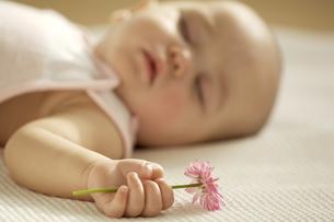 花を握って眠る赤ちゃんの写真素材 [FYI04051849]