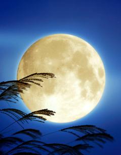 満月とススキの写真素材 [FYI04051961]