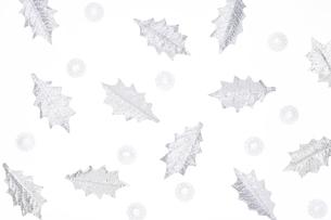 ヒイラギの葉の写真素材 [FYI04052035]