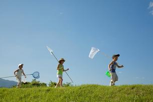 青空と虫取り網を持つ子供達の写真素材 [FYI04052253]
