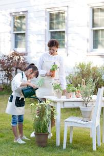 ガーデニングをする母と娘の写真素材 [FYI04052455]
