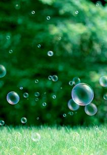 緑の中のシャボン玉の写真素材 [FYI04052458]