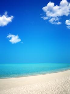 青空とビーチの写真素材 [FYI04052605]