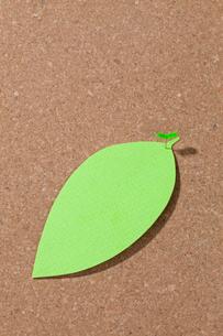 コルクボードにピンで留めた葉っぱ型のメモの写真素材 [FYI04052664]