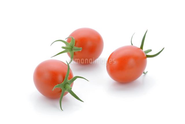 プチトマト3個の写真素材 [FYI04052897]