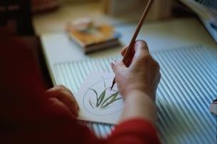 水彩画のカードを描く女性の手 オーストラリアの写真素材 [FYI04053132]