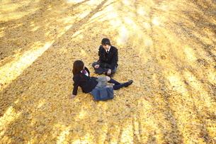 イチョウの絨毯の上の高校生カップルの写真素材 [FYI04053537]