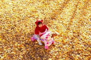 銀杏のじゅうたんで遊ぶ女の子の写真素材 [FYI04053547]