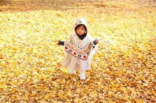 銀杏のじゅうたんで遊ぶ女の子の写真素材 [FYI04053549]