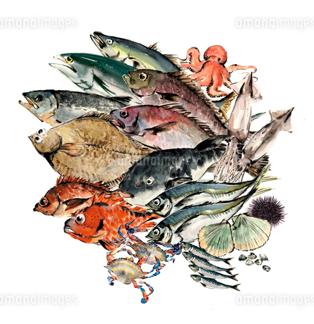 いろいろな魚介セット 水彩のイラスト素材 [FYI04055026]