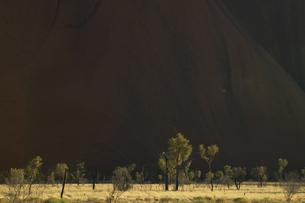 エアーズロックと木々の写真素材 [FYI04057876]