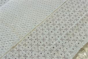 石垣島伝統行事・布さらしの写真素材 [FYI04058275]