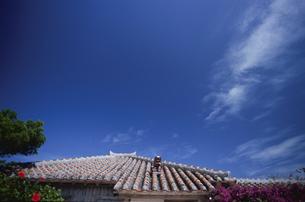 赤瓦屋根とブーゲンビリアの花の写真素材 [FYI04058278]