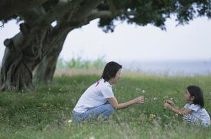 木陰に座る女の子と母親の写真素材 [FYI04058383]