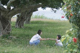 木陰に座る女の子と母親の写真素材 [FYI04058385]