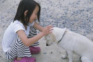 犬をなでる女の子の写真素材 [FYI04058386]