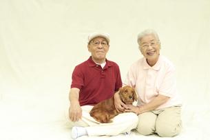 シニア夫婦と犬の写真素材 [FYI04058623]