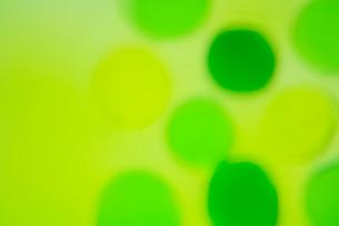 緑色の透明感のある水玉の集合の写真素材 [FYI04058665]