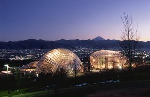 公園と富士山と甲府盆地の夜景の写真素材 [FYI04059206]