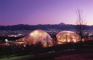 公園と富士山と甲府盆地の夜景の写真素材 [FYI04059207]