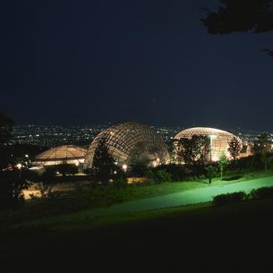 公園と富士山と甲府盆地の夜景の写真素材 [FYI04059208]