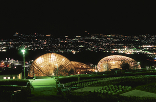 公園と富士山と甲府盆地の夜景の写真素材 [FYI04059210]