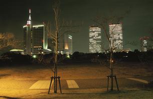 幕張海浜公園とビル群の夜景の写真素材 [FYI04059289]