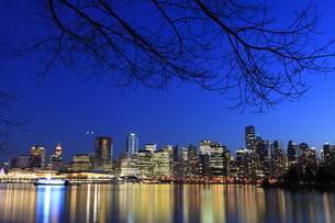 スタンレーパークより望むウォータフロントのビル群の夜景の写真素材 [FYI04059600]