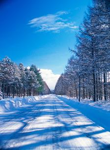 雪道と青空の写真素材 [FYI04060745]