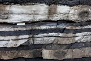 ホルンヘルス断崖 -地層がつくる縞模様-の写真素材 [FYI04060802]
