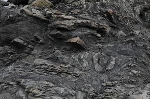 1月冬 地層の褶曲構造 四万十帯付加体堆積物の写真素材 [FYI04060828]