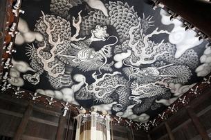 5月,建仁寺の法堂天井画「双龍図」の写真素材 [FYI04060836]