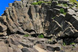 7月夏,根室車石-玄武岩の放射状節理の写真素材 [FYI04060839]