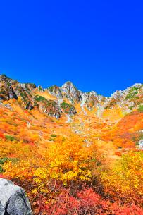秋の中央アルプス千畳敷カール 紅葉と快晴の空の写真素材 [FYI04060889]