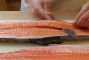 鮭の写真素材 [FYI04061174]
