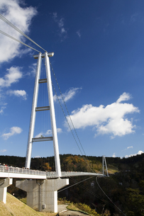 九重夢大吊橋の写真素材 [FYI04061214]