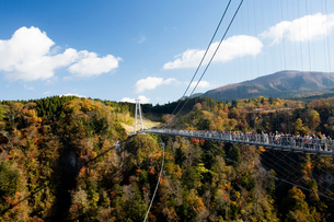 九重夢大吊橋の写真素材 [FYI04061217]