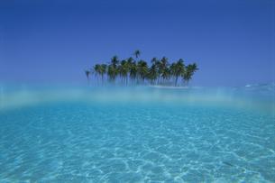 水中から見た青空と島の写真素材 [FYI04061265]