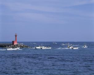 港へ帰る漁船の写真素材 [FYI04061360]