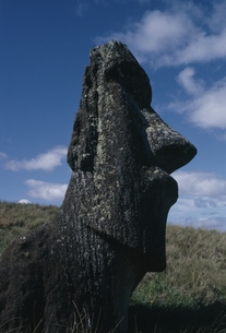 モアイ像 イースター島の写真素材 [FYI04061374]