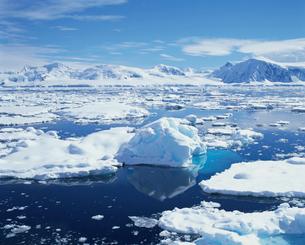 海面に浮かぶ氷の写真素材 [FYI04061430]