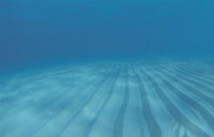 海底の砂紋の写真素材 [FYI04061470]