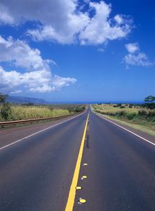 ノースショアに続く道路 オアフ島の写真素材 [FYI04061845]