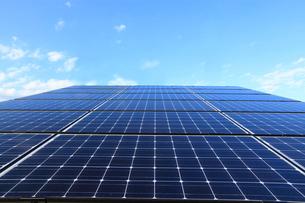 太陽光発電のソーラーパネルの写真素材 [FYI04061865]